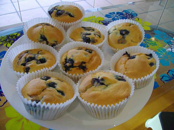 090502_blueberry_muffins_2