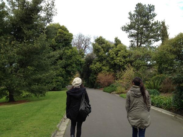 Botanic3